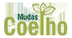 Mudas Coelho - Mudas Coelho localizado em Herculândia-SP, é especiaizado no transporte e plantio de palmeiras, mudas ornamentais, mudas frutíferas e cercas vivas.